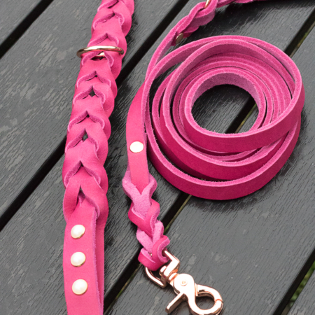 Leather dog leash and collar set, braided leather lead